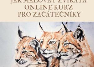 Jak malovat zvířata pro začátečníky