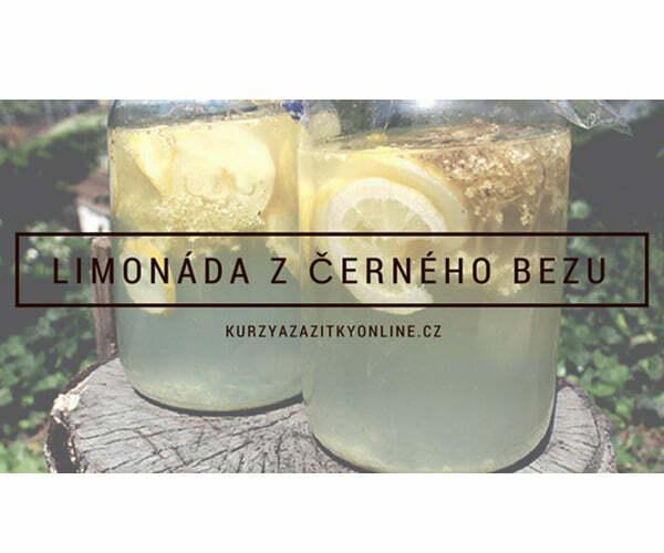 Fotografie limonády z černého bezu
