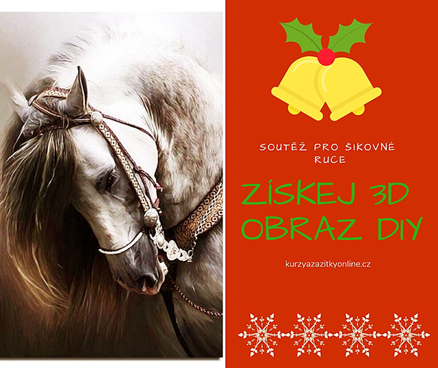 Fotografie: soutěž o 3D kamínkový obraz DIY - kůň