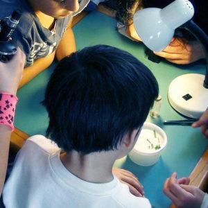 Fotografie:věda nás baví - kurzy pro malé vědce