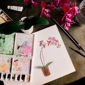 Fotografie: malování pro každého