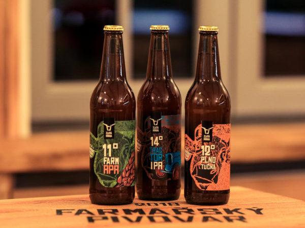 Fotografie: pivní dárky domácí pivní degustace