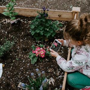 jak zařídit dětem zahradu
